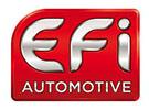 Partenaire Ciefa Lyon EFI