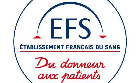 Logo EFS offre emploi alternance Ciefa Lyon